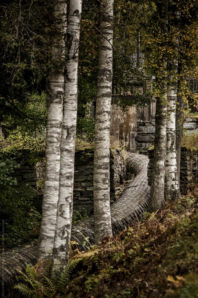 Fra den årlige tur til Sverige med fotoklubben AFA.